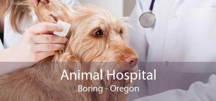 Animal Hospital Boring - Oregon