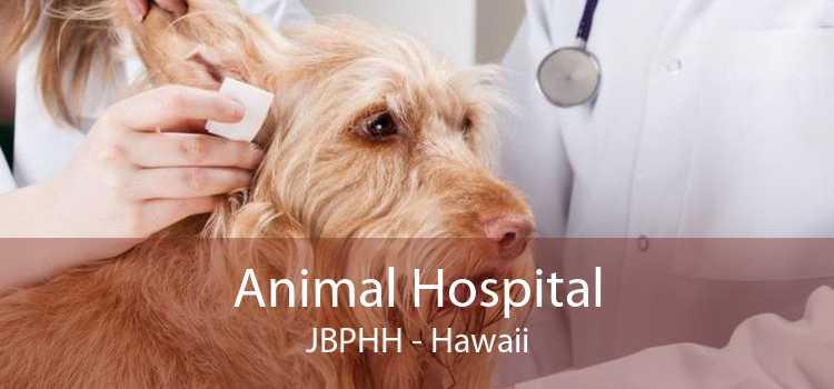 Animal Hospital JBPHH - Hawaii