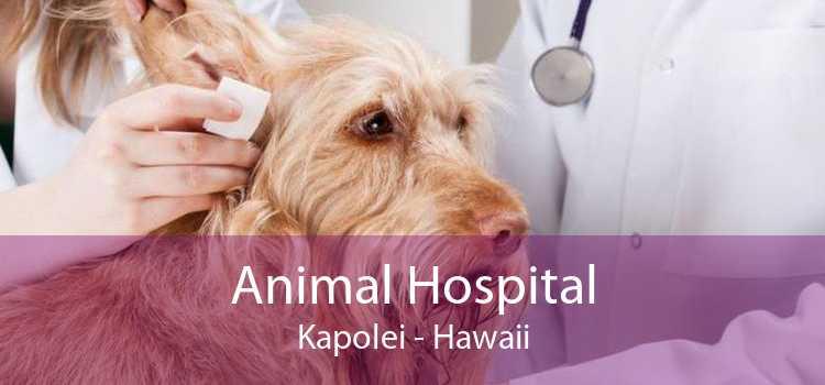 Animal Hospital Kapolei - Hawaii