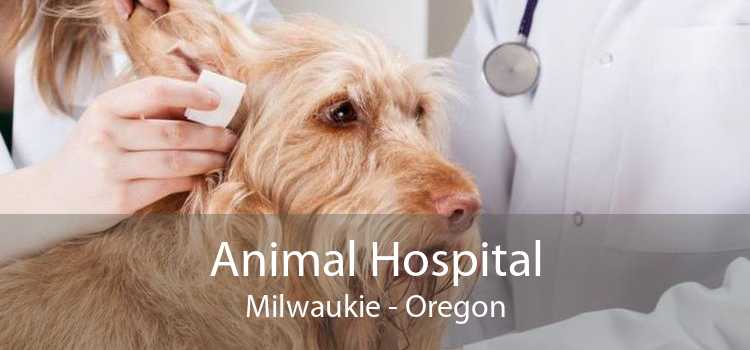 Animal Hospital Milwaukie - Oregon