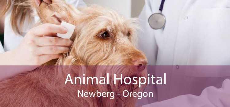Animal Hospital Newberg - Oregon
