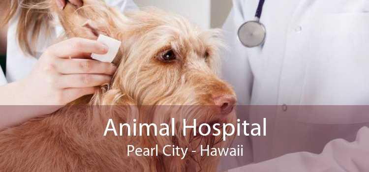 Animal Hospital Pearl City - Hawaii