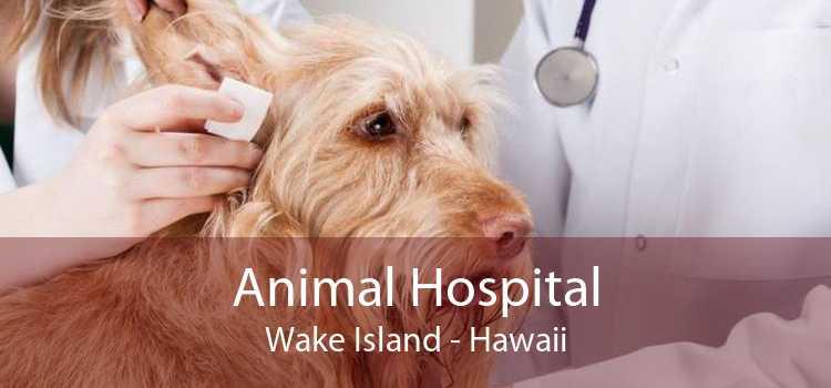 Animal Hospital Wake Island - Hawaii