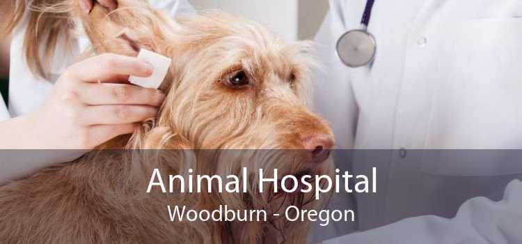 Animal Hospital Woodburn - Oregon