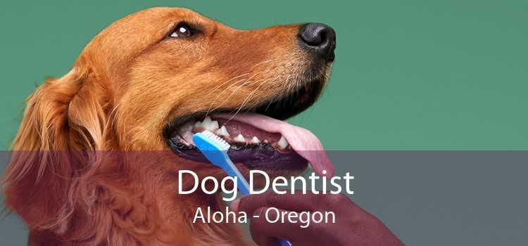 Dog Dentist Aloha - Oregon
