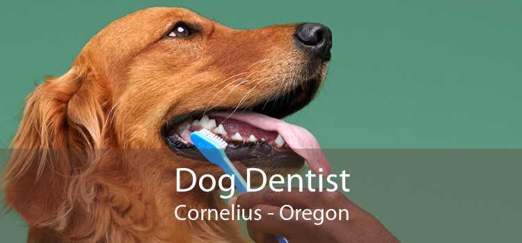Dog Dentist Cornelius - Oregon