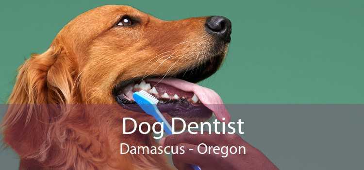 Dog Dentist Damascus - Oregon