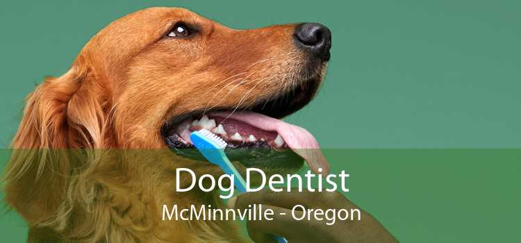 Dog Dentist McMinnville - Oregon