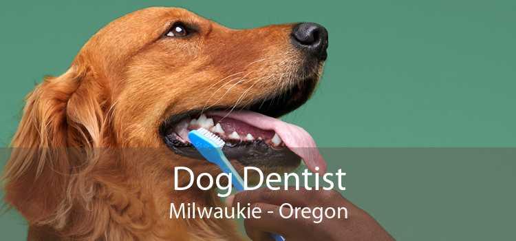 Dog Dentist Milwaukie - Oregon
