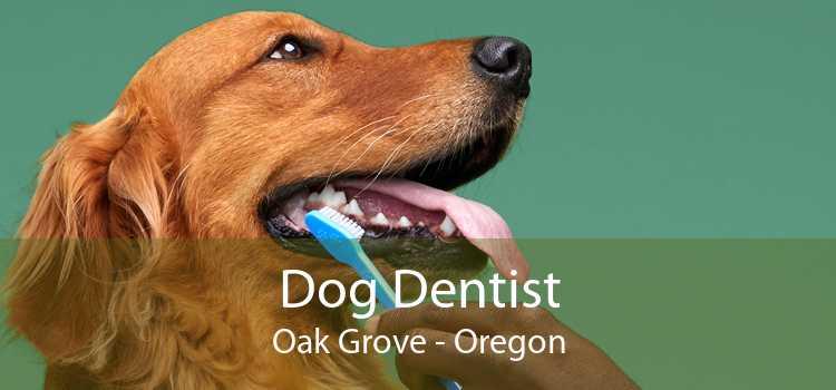 Dog Dentist Oak Grove - Oregon