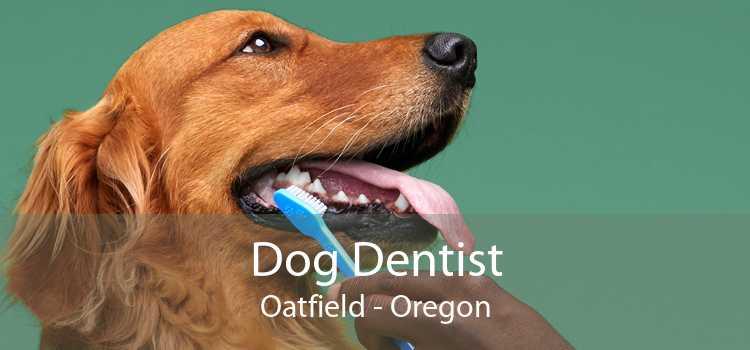 Dog Dentist Oatfield - Oregon
