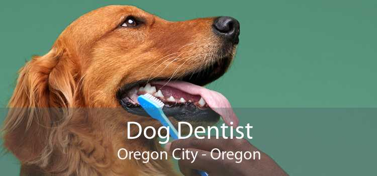 Dog Dentist Oregon City - Oregon