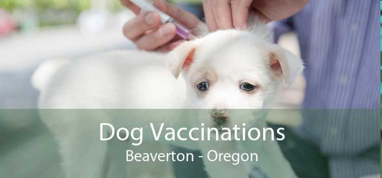 Dog Vaccinations Beaverton - Oregon