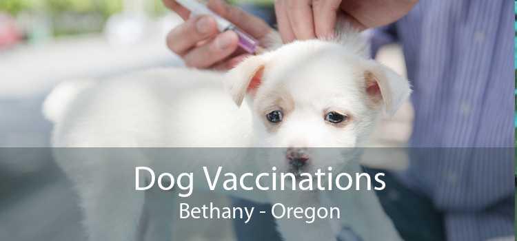 Dog Vaccinations Bethany - Oregon