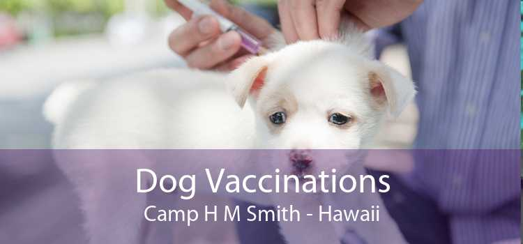 Dog Vaccinations Camp H M Smith - Hawaii