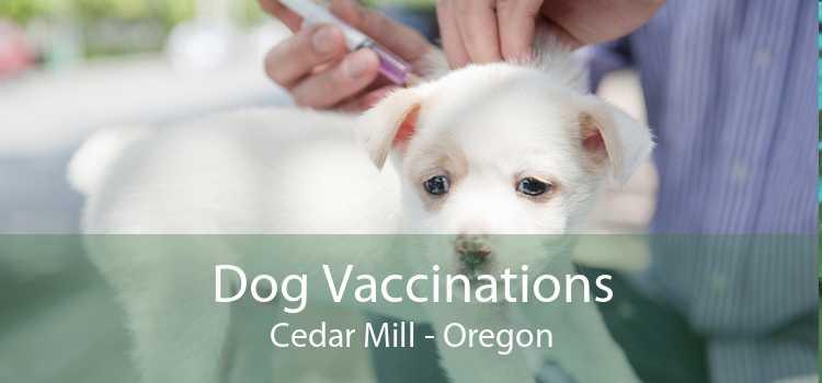 Dog Vaccinations Cedar Mill - Oregon