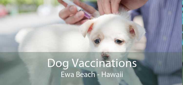 Dog Vaccinations Ewa Beach - Hawaii
