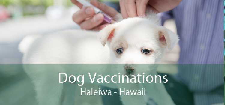 Dog Vaccinations Haleiwa - Hawaii
