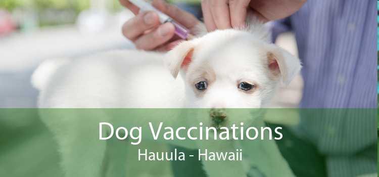 Dog Vaccinations Hauula - Hawaii