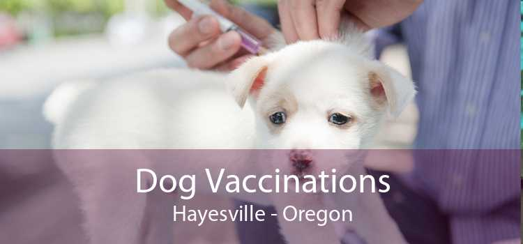 Dog Vaccinations Hayesville - Oregon