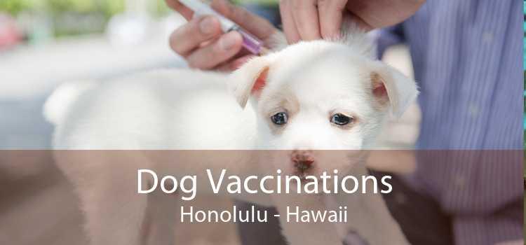 Dog Vaccinations Honolulu - Hawaii