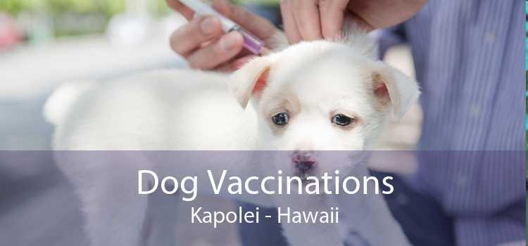 Dog Vaccinations Kapolei - Hawaii