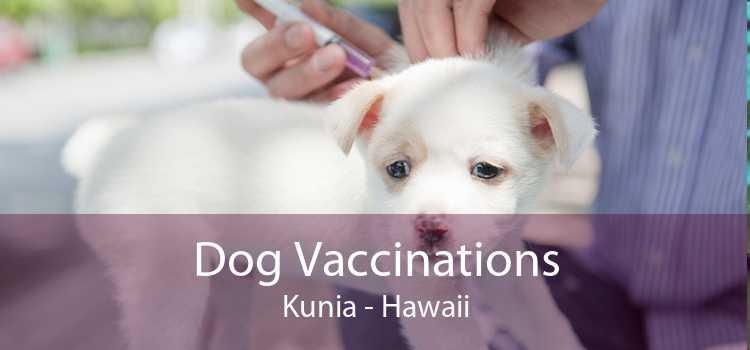 Dog Vaccinations Kunia - Hawaii