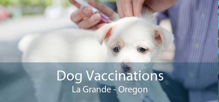 Dog Vaccinations La Grande - Oregon