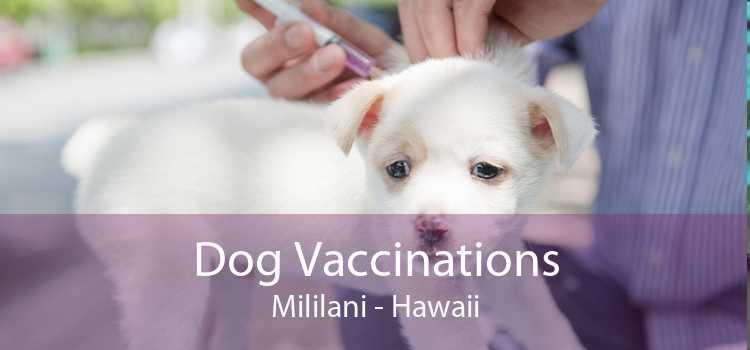 Dog Vaccinations Mililani - Hawaii