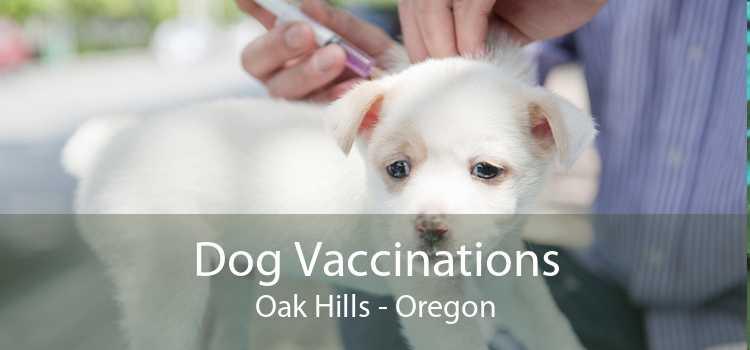 Dog Vaccinations Oak Hills - Oregon