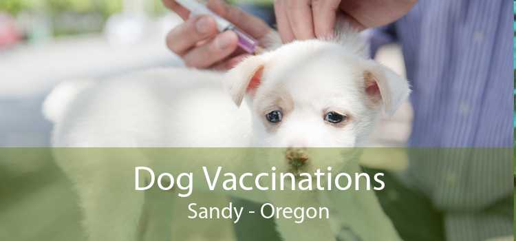 Dog Vaccinations Sandy - Oregon