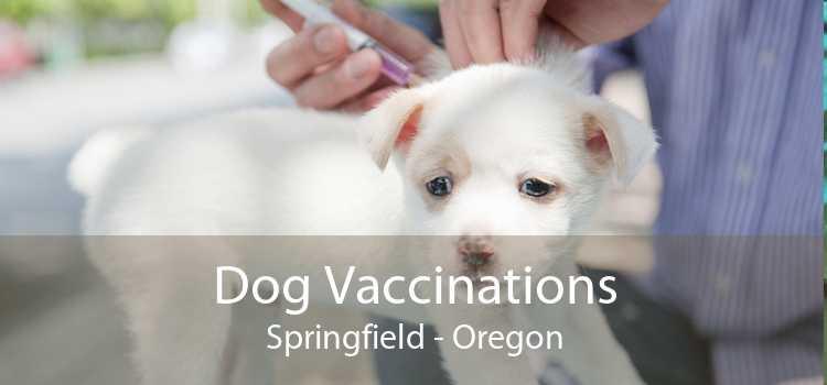 Dog Vaccinations Springfield - Oregon