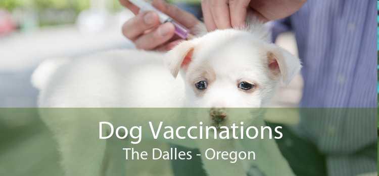 Dog Vaccinations The Dalles - Oregon