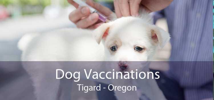 Dog Vaccinations Tigard - Oregon