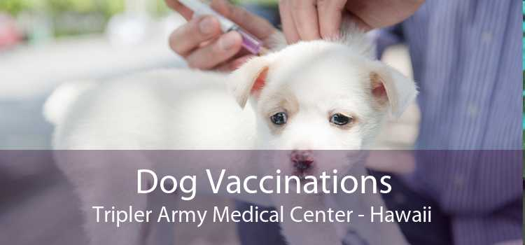 Dog Vaccinations Tripler Army Medical Center - Hawaii