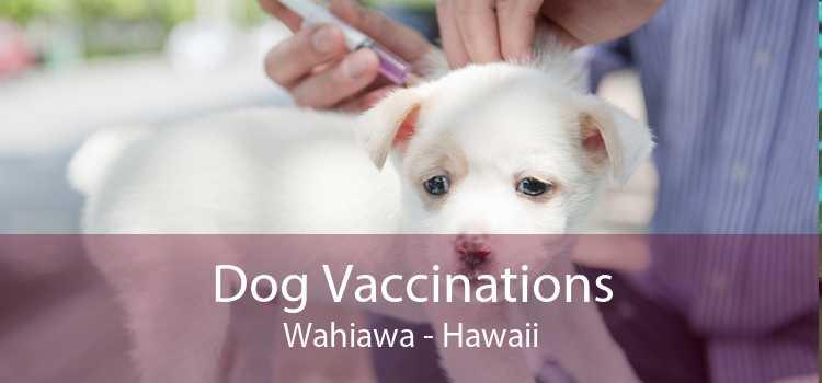 Dog Vaccinations Wahiawa - Hawaii