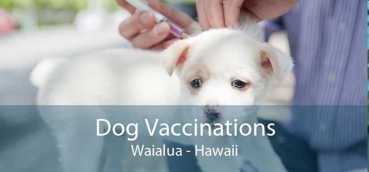 Dog Vaccinations Waialua - Hawaii