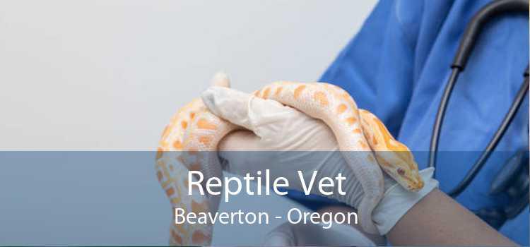 Reptile Vet Beaverton - Oregon