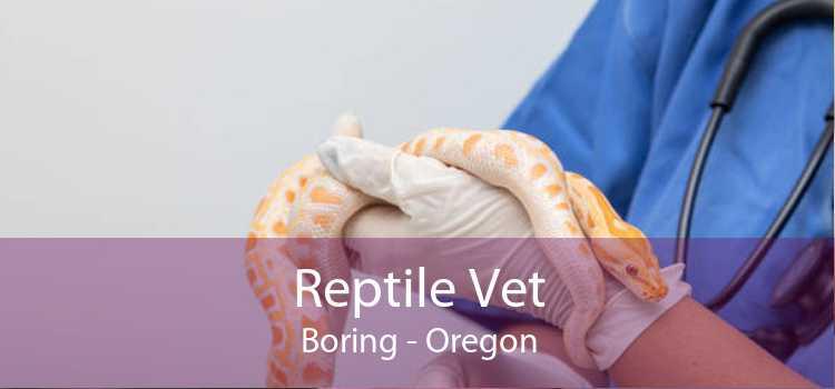 Reptile Vet Boring - Oregon