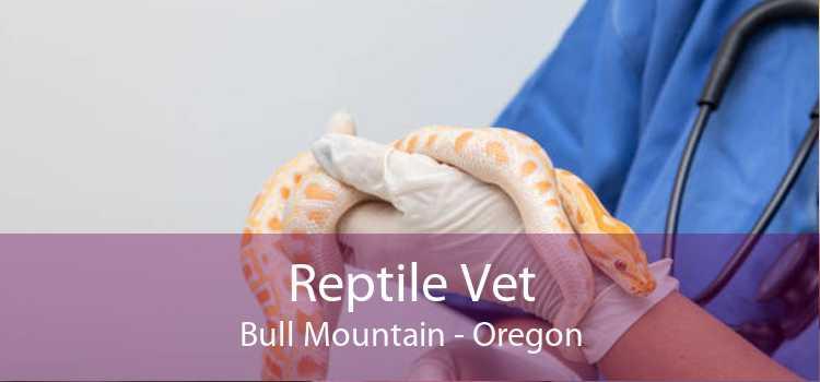 Reptile Vet Bull Mountain - Oregon