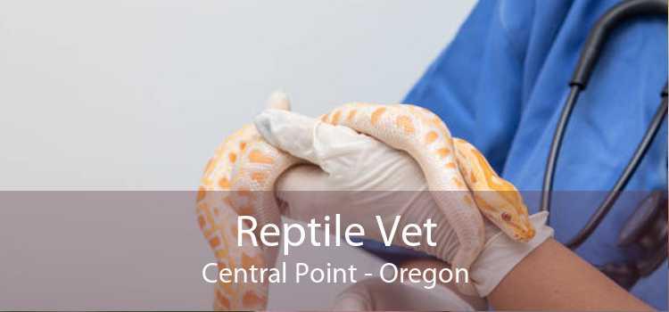 Reptile Vet Central Point - Oregon