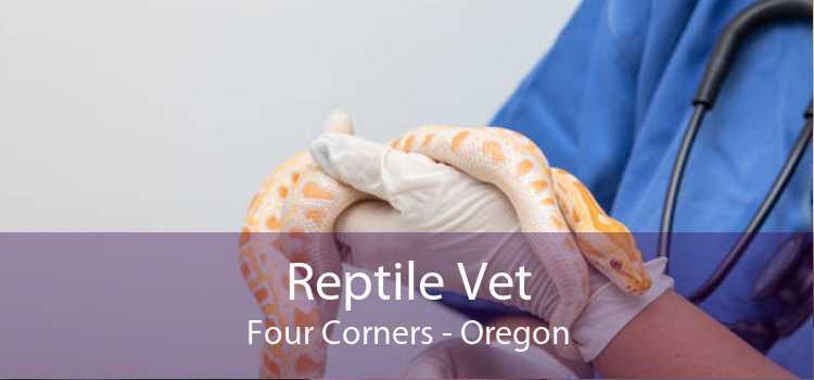 Reptile Vet Four Corners - Oregon
