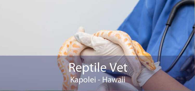 Reptile Vet Kapolei - Hawaii
