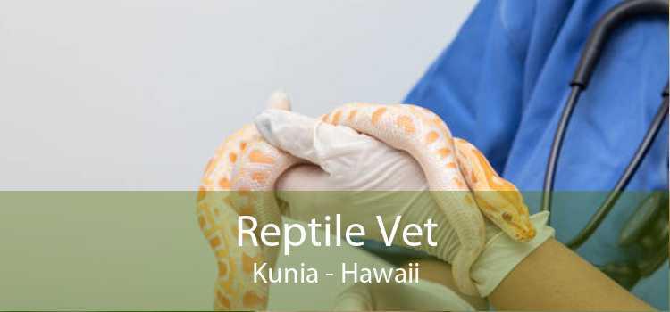Reptile Vet Kunia - Hawaii