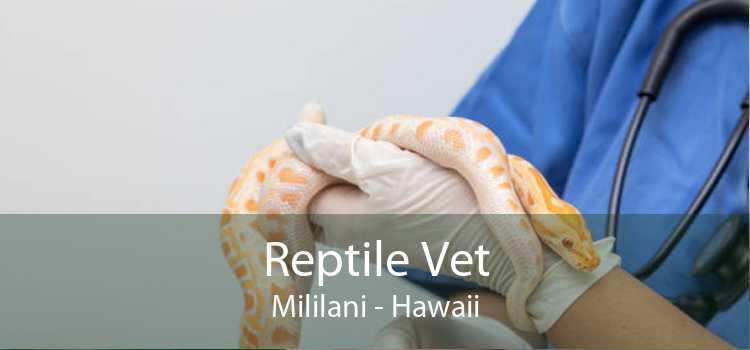 Reptile Vet Mililani - Hawaii