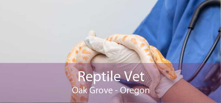Reptile Vet Oak Grove - Oregon