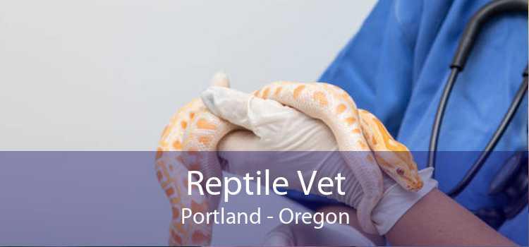 Reptile Vet Portland - Oregon