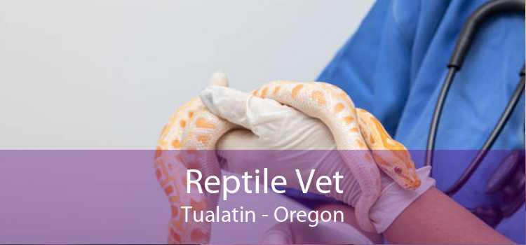 Reptile Vet Tualatin - Oregon