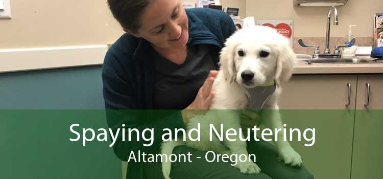 Spaying and Neutering Altamont - Oregon