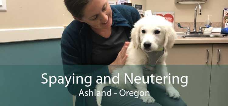 Spaying and Neutering Ashland - Oregon